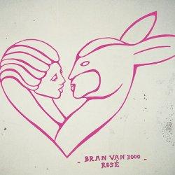Bran Van 3000 - Rosé